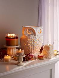 Have A Hoot With Our Welovefall Decor
