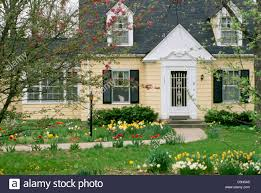 Pictures Cape Cod Style Homes by Yellow Cape Cod Style Home With Blooming Flowers And Cat In