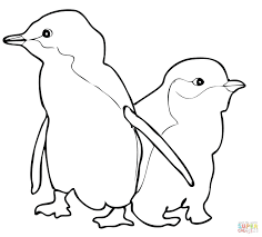 Uncategorized Penguin Color Pages Coloring Pictures To Free Club Sheets Puffles Pin Drawn