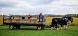 Pumpkin Picking Near Lancaster Pa by Corn Mazes Pumpkin Patches And Fall Farm Fun In Central Pa