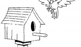 Good Bird House Coloring Pictures Free Online
