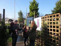 Harrows Christmas Trees by Real Christmas Trees In Kensal Green London The Christmas Forest