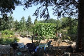 File Matthaei Botanical Gardens Fairy & Troll Knoll JPG