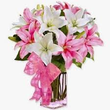 30 best Send Fathers day Flowers to USA images on Pinterest