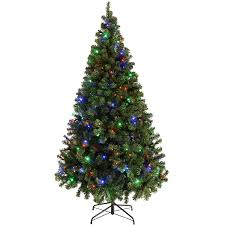 What Kind Of Christmas Tree To Buy by Amazon Co Uk Christmas Trees