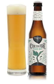 Saranac Pumpkin Ale Growler by 259 Best Beers Of The Month Images On Pinterest Brewing Beer