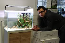 Clean , Simple Slick Setup And Aquascape By Oleg Foht. Check His ... How To Set Up An African Cichlid Tank Step By Guide Youtube Aquascaping The Art Of The Planted Aquarium 2013 Nano Pt1 Best 25 Ideas On Pinterest Httpwwwrebellcomimagesaquascaping 430 Best Freshwater Aqua Scape Images Aquascape Equipment Setup Ideas Cool Up 17 About Fish Process 4ft Cave Ridgeline Aquascape A Planted Tank Hidden Forest New Directly After Setting When Dreams Come True