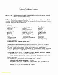 Real Estate Paralegal Resume Beautiful Download Now Realtor Examples