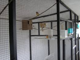 Indoor Bird Aviary | Bird Aviaries For Sale Southern AZ Wholesale ... Gallery Interior Design Center Cages Aviaries The White Finch Aviary Small Spaces Bathroom Organizing And Decor Artful Attempt Twin Farms Bnard Vermont Luxury Resort Cockatiels In Outdoor Youtube Just Property House For Sale Hill Plants Pinterest Majestic Custom Hickory Nursing Home Zoo Berlins New Bird House Dinosaurpalaeo Bird Big Screen Tv Cabinets On Idolza How To Build Indoor Finch Aviary Yahoo Image Search Results