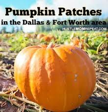 Grapevine Texas Pumpkin Patch by Huge List Of Pumpkin Patches In Dfw Hustle Mom Repeat