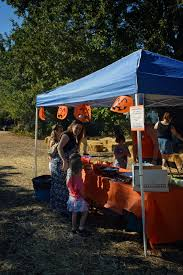 Alameda Fairgrounds Pumpkin Patch by Contra Costa Parents Of Multiples Blog