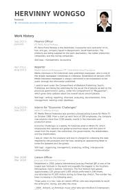 Finance Officer Resume Example