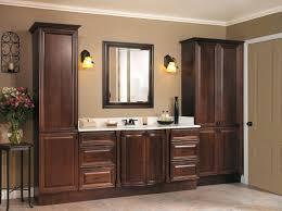light brown wall paint bathroom decoration using interior