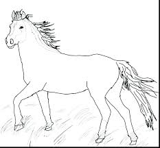 Glamorous Horse Pictures To Color Realistic Printable