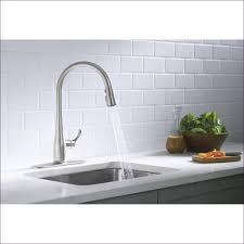Water Ridge Pull Out Kitchen Faucet Troubleshooting by 100 Pull Out Kitchen Faucet Repair Moen Align Single Handle