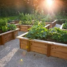 What Can You Grow In A Raised Bed Garden