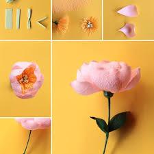 342 best DIY Paper Flowers DIY cvetovi od papira images on