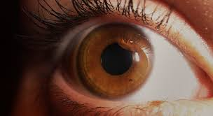 Theatrical Contacts No Prescription by Haunted Eyes Halloween Contact Lenses My Best Contacts