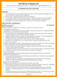 Resume Summary Statements Spectacular Statement