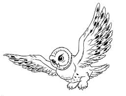 Flying Owl Coloring Page For Kids Printable