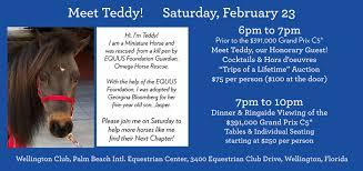100 Wellington Equestrian Club EQUUS Foundation