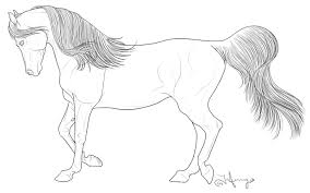 Coloring Pages Horses Heads Ribbon Print Home Realistic Showy Horse Head