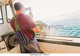 Decorative Lobster Trap Uk lobster trap stock photos u0026 lobster trap stock images alamy