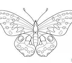 Butterflies Coloring Pages Butterfly Free Images