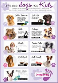 Non Shedding Dog Breeds Kid Friendly by Kid Friendly Breeds Of Small Dogs Dog Breeder