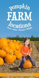 Pumpkin Farms Southern Illinois by Tips On Picking Caring For And Carving A Pumpkin Seasons