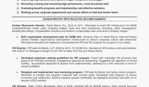Professional Profile Resume Examples Best Of Summary Sample Lovely Personal For