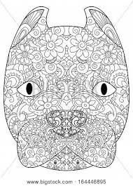 Good American Pit Bull Terrier Head Coloring Book For Adults Vector Illustration Anti Stress