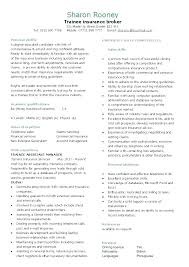 Cv Resume Example Personal Profile This Is Sample For Luxury Business