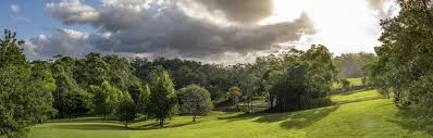 100 Tree Houses Maleny QLD Holiday Accommodation More Stayz