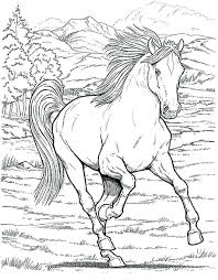 Realistic Coloring Pages Horse Page For Girls Printable Kids Colouring