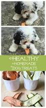 Libby Canned Pumpkin For Dogs by 17 Best Images About Dog Recipes On Pinterest