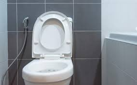 heute putzen wir den toilettensitz toilettensitz toilette