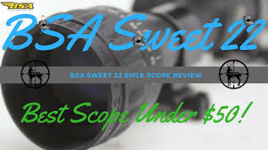 100 Sweet 22 BSA Best Rifle Scope For The Price YouTube