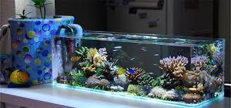 aquarium nano eau de mer nano aquariums complet kit clef en blue ring aqua