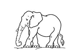 Elephant Pictures To Color