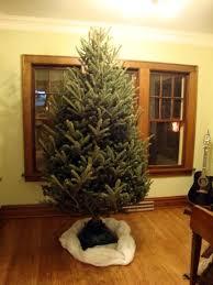 Menards Christmas Tree Bag by J U0026k Homestead November 2011
