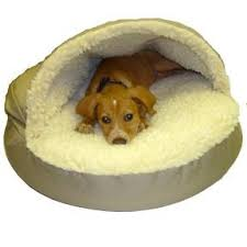 snoozers pet products