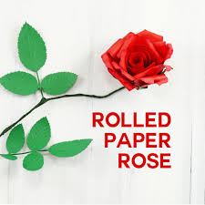 Rolled Paper Rose Flower