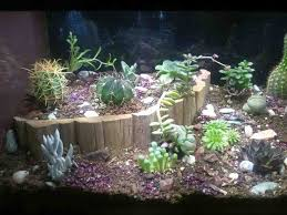Star Wars Themed Aquarium Safe Decorations by Best 25 Custom Aquariums Ideas On Pinterest Plant Fish Tank