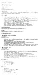 Car Driver Resume Personal Truck Summary Example Heavy