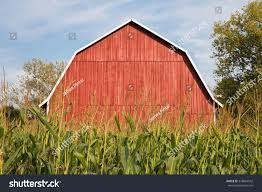 Red Barn Behind Tall Corn Classic Stock Photo 318864542 - Shutterstock Tammie Dickersons Arstic Journey September 2014 The 7msn Ranch Breakfast From Behind The Barn John Elkington Caroline From 0 To 60 In Well Years Sunrise Behind A Barn On Foggy Morning Stock Photo Image 79809047 Red Trees 88308572 Untitled Document Our Restoration Preserving History Through Barnwood Rebuild Tornado Forming Old Royalty Free Images Sketch For By Hbert Sidney Palmer At Consignorca Shed Olper And Fustein Innervals Vals Valley Towering Sunflower Growing Beside Bigstock