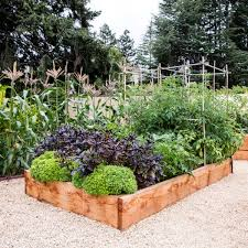 Transform Your Outdoors With A Raised Garden Bed Holman