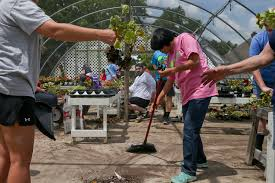 Tulsa World Pumpkin Patch by Vandals Cause Estimated 25 000 In Damage To Plants At A New