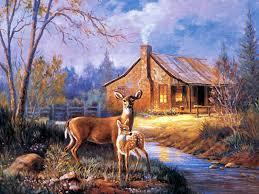 Deer Wallpaper For Computer