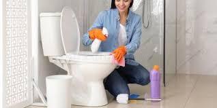 ultimative anweisungen zur toilettenreinigung korrekt